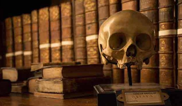 A still life arrangement of books from the collection of Marsh's along with our Stella skull