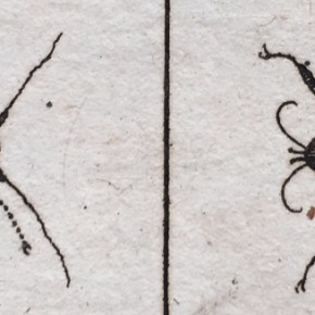 Beetle prints in Johannes Goedardtius' Of Insects